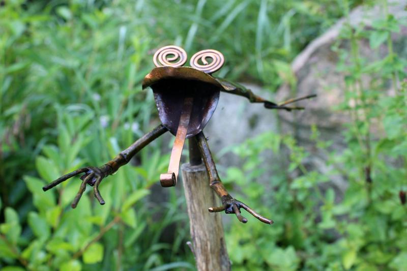 Leapin' lickin' frogs up close! Photo: Jamie L. Manser JamieManser.com